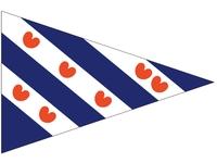 Talamex vlaggen Nederland: Puntvlag Friesland