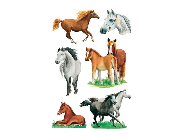 Etiket herma 3553 paard