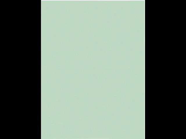 Dossiermap exacompta jura 160gr 1klep lichtgroen