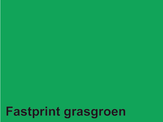 Kopieerpapier fastprint a4 120gr grasgroen 100vel