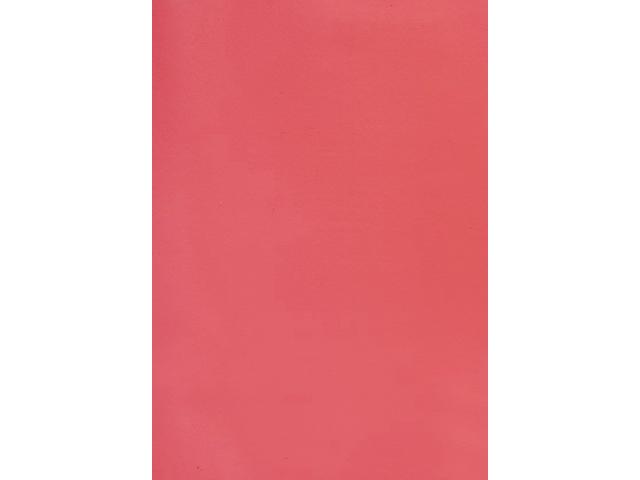Voorblad gbc a4 pvc 180micron rood 100stuks