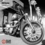 RSD_domino_bike