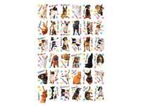 Beloningsstickers Honden-Poezen 11 36 motieven, 720 stickers