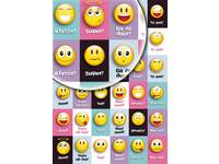 Beloningsstickers Smileys 36 motieven, 720 stickers