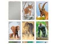 Krasstickers Werelddieren 646 36 motieven, 540 stuks