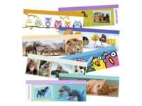 Leeswijzer Schoolpakket 8 motieven, 200 stuks