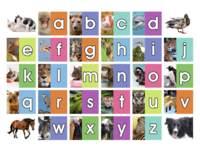 Beloningstickers 467 Het Dieren ABC, 30 motieven, 600 stuks