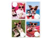 Schriften 24-2,5, selfie hond, 16,5 x 21 cm, 80 gr