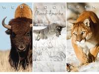 Miniposters Werelddieren Noord Amerika 1025, 2 motieven, 20 stuks