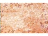 Designpapier pirate | 43 x 28 cm, 32 vel