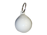 Key ring buoy