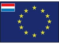 Raad van Europa vlag met afb.: kleine vlag Nederland
