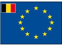 Raad van Europa vlag met afb.: kleine vlag van België