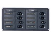Switch panel with fuses