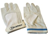 Talamex sailing / surfing gloves