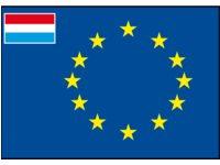 Europaflagge kleine Flagge Niederlande