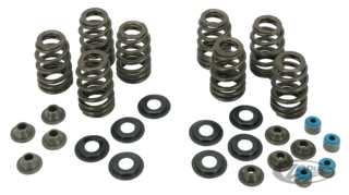 KIBBLEWHITE HIGH PERFORMANCE OVATE WIRE BEEHIVE VALVE SPRING KITS