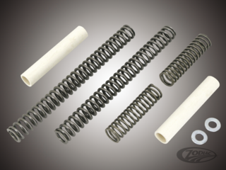 Fork Springs & Lowering Kits
