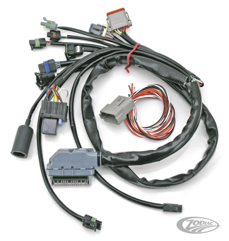 S&S CUSTOM DELPHI-STYLE EFI WIRING HARNESS - Zodiac on