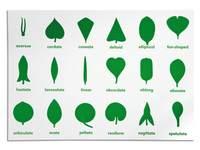 Controlekaart voor botaniekastje